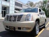 2007 Gold Mist Cadillac Escalade AWD #9236173