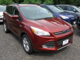 2014 Sunset Ford Escape SE 2.0L EcoBoost 4WD #95577642