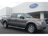 2014 Sterling Grey Ford F150 XLT SuperCrew #95608241