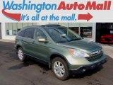 2009 Green Tea Metallic Honda CR-V EX-L 4WD #95652741