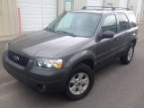 2006 Dark Shadow Grey Metallic Ford Escape XLT V6 #95734499