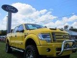 2014 Tonka Edition Iconic Yellow Ford F150 Tonka Edition Crew Cab 4x4 #95733827