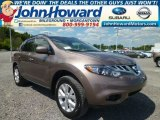 Tinted Bronze Nissan Murano in 2014
