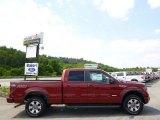 2014 Sunset Ford F150 FX4 SuperCrew 4x4 #95801055