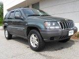 2002 Onyx Green Pearlcoat Jeep Grand Cherokee Laredo 4x4 #9567144