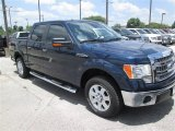 2014 Blue Jeans Ford F150 XLT SuperCrew #95831626