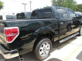 2014 Green Gem Ford F150 XLT SuperCrew #95831624