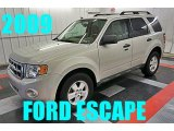 2009 White Suede Ford Escape XLT #95831518