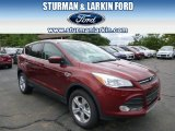 2014 Sunset Ford Escape SE 2.0L EcoBoost 4WD #95831730