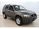 2006 Dark Shadow Grey Metallic Ford Escape XLT V6 #95831929