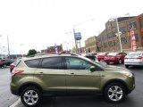 2013 Ginger Ale Metallic Ford Escape SE 2.0L EcoBoost 4WD #95831706