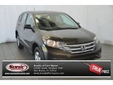 2014 Kona Coffee Metallic Honda CR-V LX #95831570