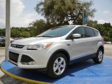2014 Ingot Silver Ford Escape SE 1.6L EcoBoost #95868530