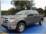 2014 Sterling Grey Ford F150 XLT SuperCrew #95868514
