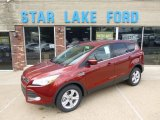 2014 Sunset Ford Escape SE 1.6L EcoBoost 4WD #95906861