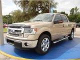 2014 Pale Adobe Ford F150 XLT SuperCrew #95946179