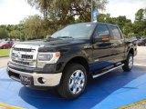 2014 Tuxedo Black Ford F150 XLT SuperCrew 4x4 #95946175