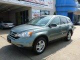 2011 Opal Sage Metallic Honda CR-V EX 4WD #95989125