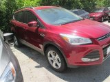 2014 Ruby Red Ford Escape SE 1.6L EcoBoost #96011908