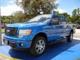 2014 Blue Flame Ford F150 STX SuperCrew 4x4 #96045208