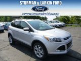 2014 Ingot Silver Ford Escape Titanium 2.0L EcoBoost 4WD #96045268