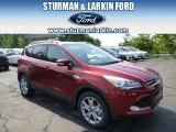 2014 Sunset Ford Escape Titanium 2.0L EcoBoost 4WD #96045265