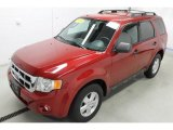 2010 Steel Blue Metallic Ford Escape XLT 4WD #96044987