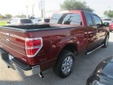 2014 Sunset Ford F150 XLT SuperCab #96086185