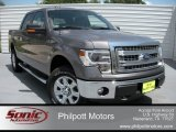 2014 Sterling Grey Ford F150 XLT SuperCrew 4x4 #96125582