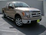 2014 Pale Adobe Ford F150 XLT SuperCrew #96125578