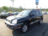 2003 Black Obsidian Hyundai Santa Fe GLS 4WD #96125547