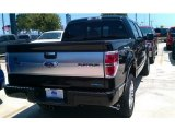 2014 Tuxedo Black Ford F150 Platinum SuperCrew 4x4 #96160229