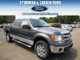 2014 Sterling Grey Ford F150 XLT SuperCrew 4x4 #96160372