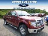 2014 Sunset Ford F150 XLT SuperCrew 4x4 #96160367