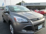 2014 Sterling Gray Ford Escape SE 2.0L EcoBoost #96160265