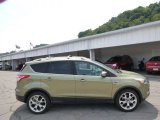 2013 Ginger Ale Metallic Ford Escape Titanium 2.0L EcoBoost 4WD #96160326