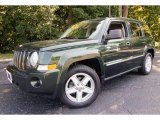 2010 Jeep Patriot Natural Green Pearl