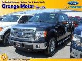 2014 Tuxedo Black Ford F150 XLT SuperCrew 4x4 #96222955