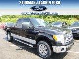 2014 Tuxedo Black Ford F150 XLT SuperCab 4x4 #96249081