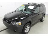 2006 Black Ford Escape XLT V6 #96248820