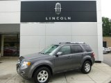 2011 Sterling Grey Metallic Ford Escape Limited V6 4WD #96290219