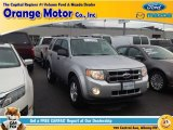 2012 Ingot Silver Metallic Ford Escape XLT V6 #96333089