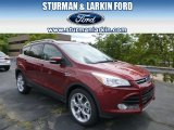 2014 Sunset Ford Escape Titanium 1.6L EcoBoost 4WD #96378951