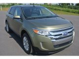 2013 Ginger Ale Metallic Ford Edge Limited #96420481
