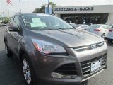 2014 Sterling Gray Ford Escape Titanium 2.0L EcoBoost #96470656