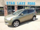 2013 Ginger Ale Metallic Ford Escape SE 2.0L EcoBoost 4WD #96470964