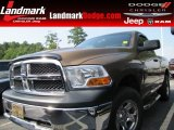 2012 Saddle Brown Pearl Dodge Ram 1500 ST Regular Cab #96507717