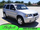 2006 Silver Metallic Ford Escape Limited #9565356