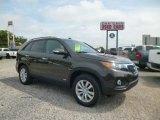 2011 Java Brown Kia Sorento EX AWD #96544959