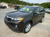 2011 Kia Sorento Java Brown